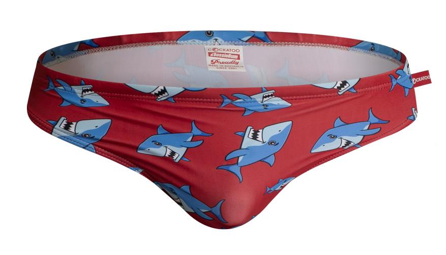 Cockatoo Shark Lifestyle Image